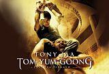 Tygoon