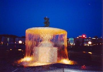 Yokosukakurage